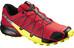 Salomon Speedcross 4 Trailrunning Shoes Men radiant red/black/corona yellow